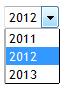 Tennis Club Website Year Dropdown Box
